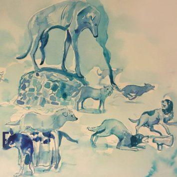 Científicos Anónimos #016: Perros Ferales