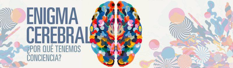 Científicos Anónimos #020: ¿Porqué tenemos consciencia?