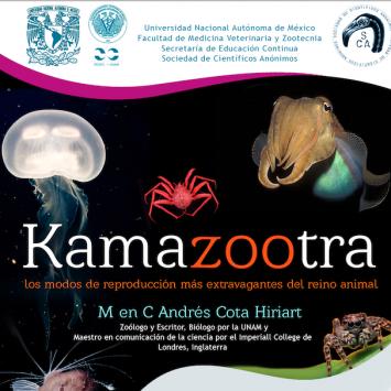 Kamazootra: los modos de reproducción más extravagantes del reino animal