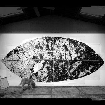 Dosis de Arte #003: Jan Hendrix