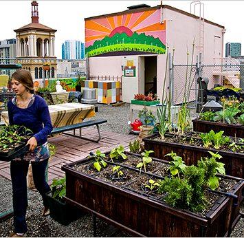 Perspectivas globales de la Agricultura Urbana