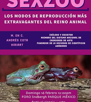 SEXZOO: los modos de reproducción más extravagantes del reino animal