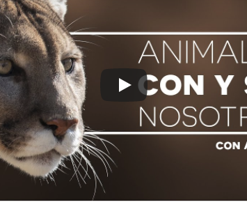 Animales con y sin nosotros TV UNAM