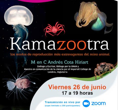 Kamazootra: los modos de reproducción más extravagantes del reino animal (evento en línea)