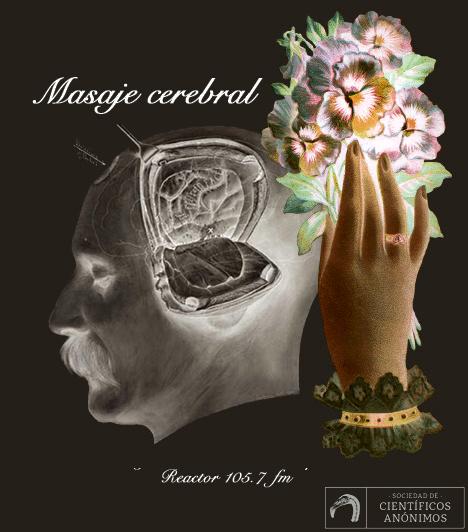 Masaje Cerebral: Colores secretos de la naturaleza